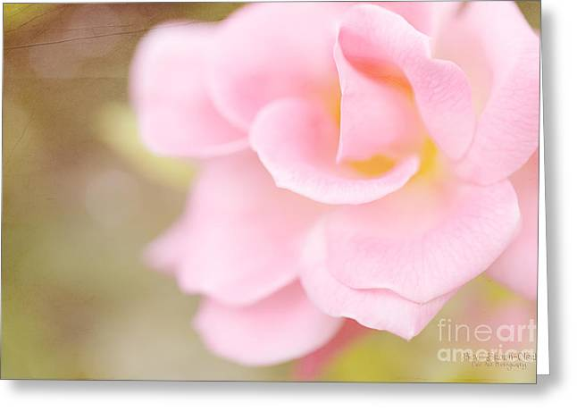 Warrior Greeting Card by Beve Brown-Clark Photography