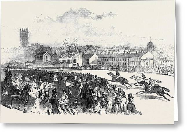 Warwick Races Greeting Card