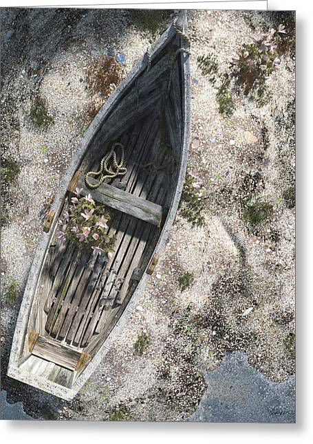 Washed Ashore Greeting Card by Cynthia Decker