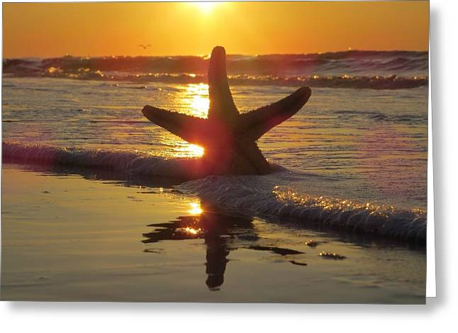 Greeting Card featuring the photograph Washed Ashore by Nikki McInnes