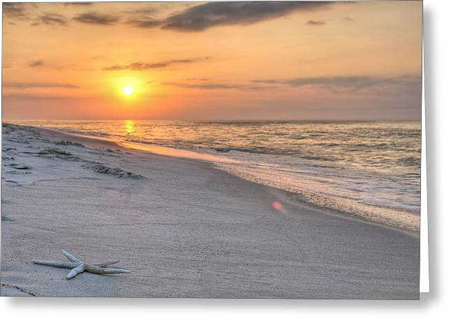 Washed Up On Orange Beach Greeting Card by JC Findley