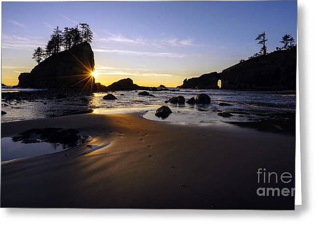 Washington Coast Evening Sunstar Tide Greeting Card by Mike Reid