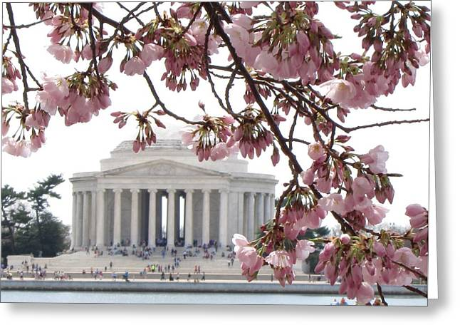 Washington Dc In Bloom Greeting Card