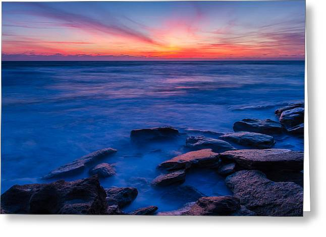 Washington Oaks Twilight Greeting Card