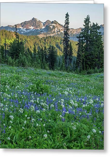 Washington State, Mount Rainier Greeting Card