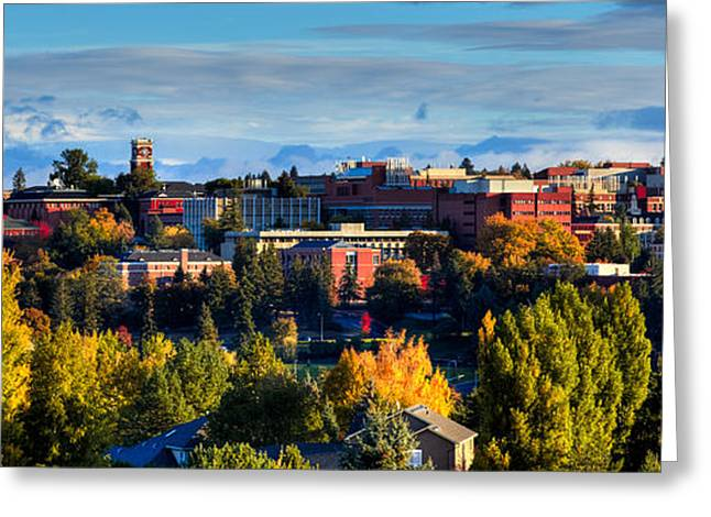 Washington State University In Autumn Greeting Card