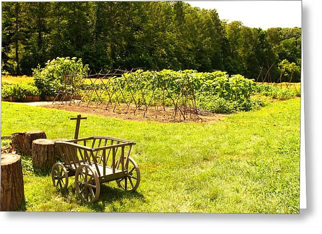 George Washington's Garden Greeting Card