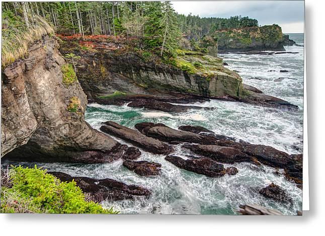 Washington's Rocky Coast Greeting Card by Rich Leighton