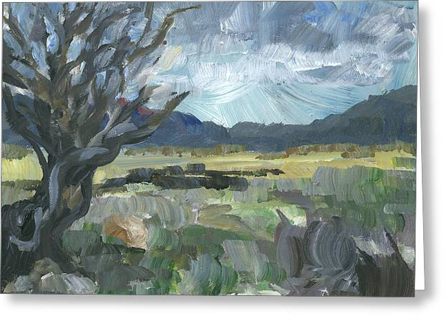 Washoe Valley Greeting Card by Susan Moore