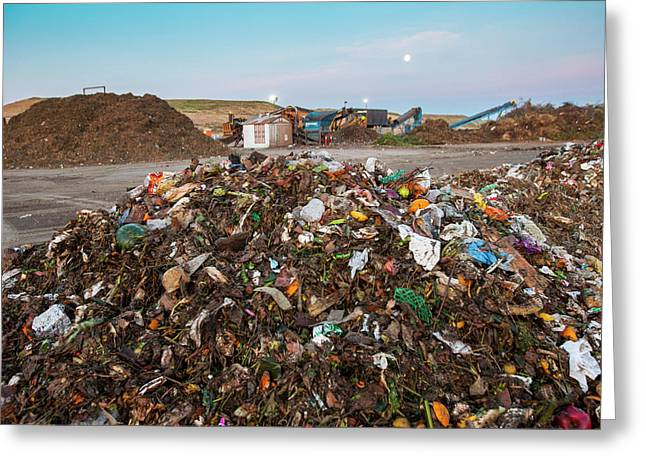 Waste At Composting Recycling Facility Greeting Card by Peter Menzel
