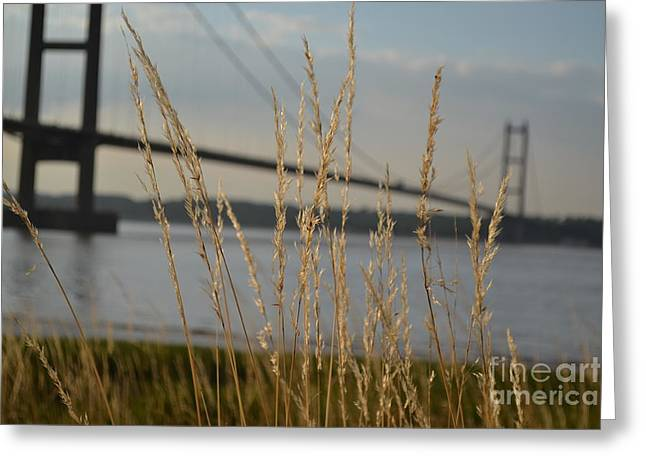 Wasting Time By The Humber Greeting Card by Scott Lyons