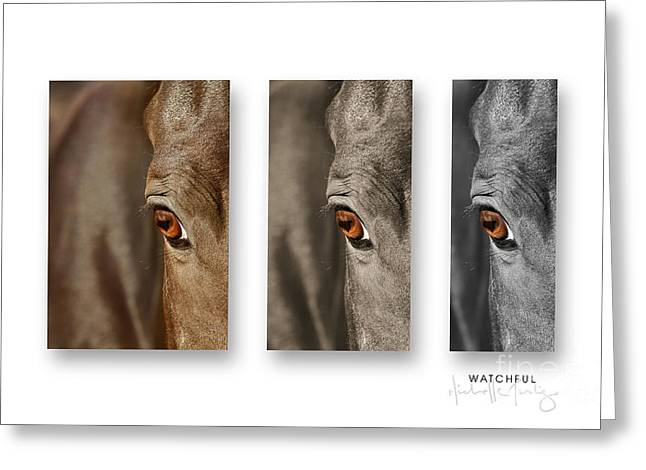 Watchful Triptych Greeting Card