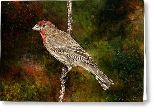 Greeting Card featuring the digital art Watchful House Finch by J Larry Walker