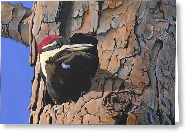 Watchful Woodpecker Greeting Card by Kirsten Wahlquist