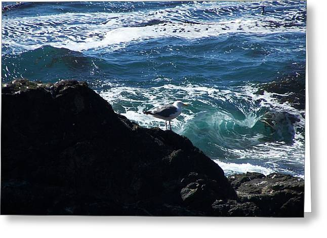 Greeting Card featuring the photograph Watching As The Waves Pass By by Christine Drake