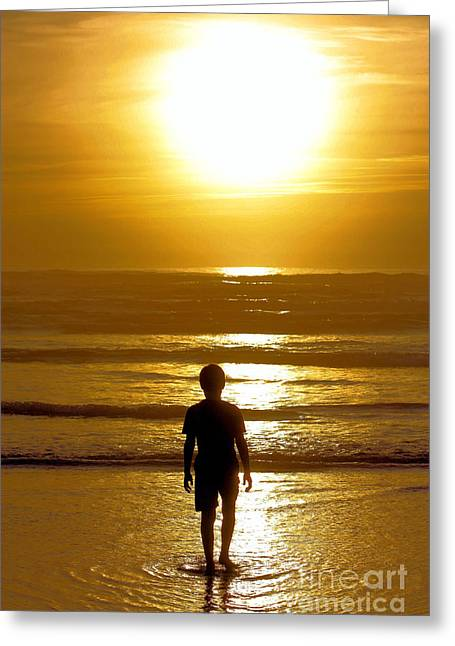 Watching The Golden Sunset Greeting Card by Nick Gustafson