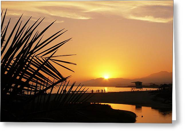 Watching The Sunset Greeting Card by Ron Regalado