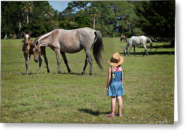 Watching The Wild Horses Greeting Card