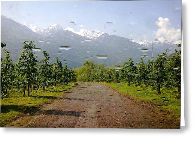 Greeting Card featuring the photograph Water And Apple Juice by Giuseppe Epifani