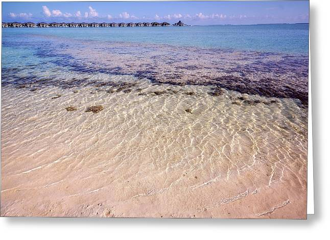 Water Attraction. Tropical Maldives Greeting Card by Jenny Rainbow