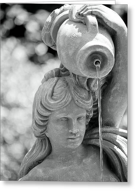 Water Bearer 1 Greeting Card by Sheri McLeroy