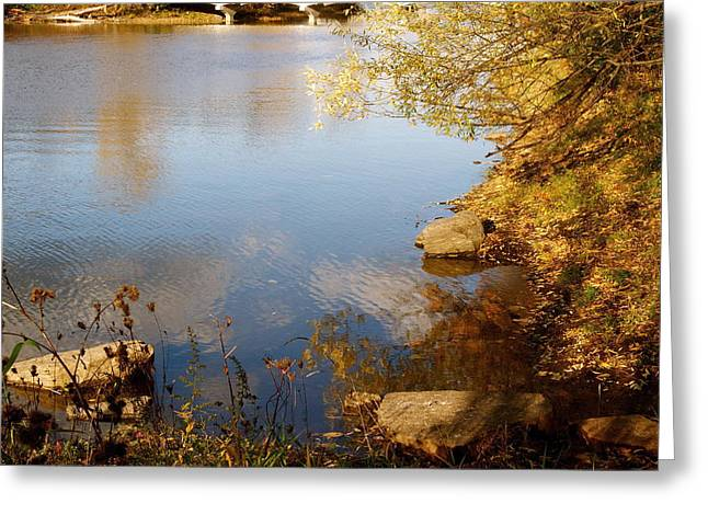 Water Beauty Greeting Card by Jocelyne Choquette