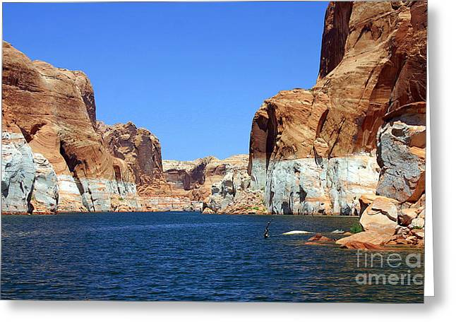 Water Canyons Greeting Card by Bob Hislop