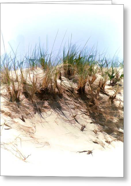 Water Color Sketch  Beach Dune Greeting Card by Elaine Plesser