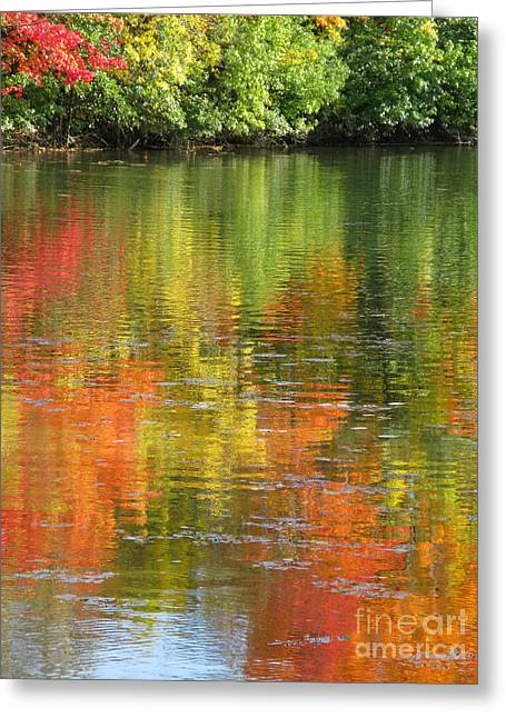 Water Colors Greeting Card by Ann Horn