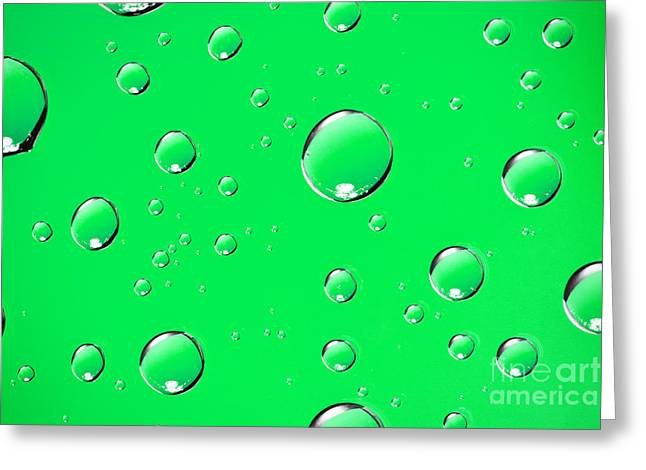Water Drops On Green Greeting Card by Sharon Dominick