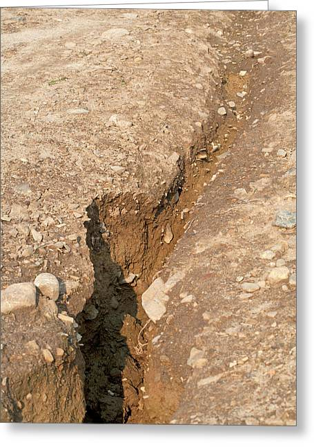 Water Erosion Due To Irrigation Runoff Greeting Card