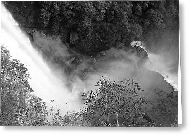 Water Fall And Bushland Greeting Card by Cheryl Miller