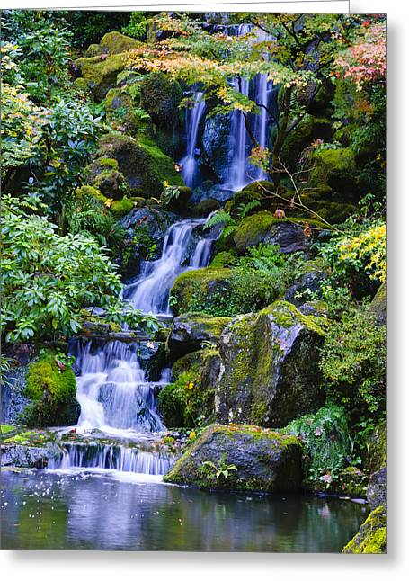 Water Fall Greeting Card by Dennis Reagan