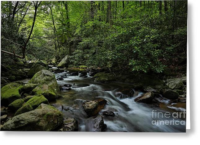 Water Falls And Rocks Greeting Card by Mina Isaac