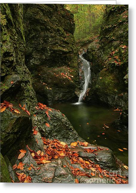 Water Falls As Autumn Starts Greeting Card by Karol Livote