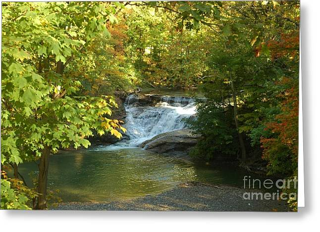 Water Falls Greeting Card by Kathleen Struckle