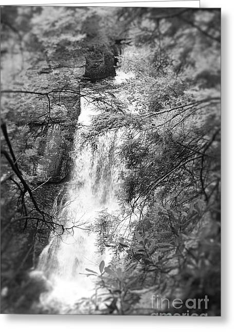 Greeting Card featuring the photograph Water Falls by Paul Cammarata