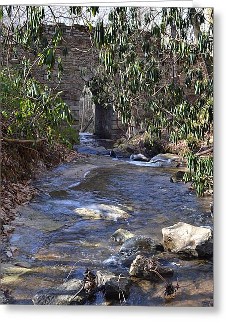 Water Flow To Poinsett Greeting Card