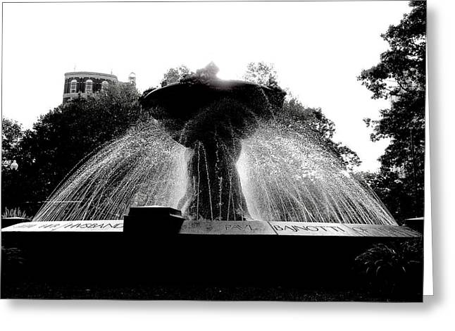 Water Fountain Silhouette Greeting Card By Karen Bibbo Lord