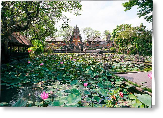 Water Lilies In A Pond At The Pura Greeting Card by Panoramic Images