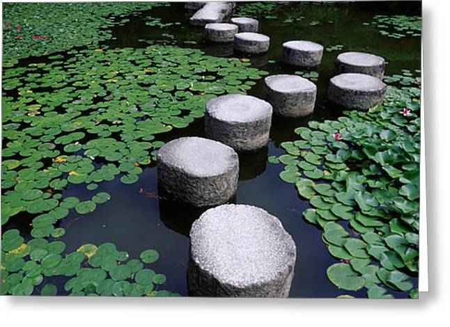 Water Lilies In A Pond, Helan Shrine Greeting Card
