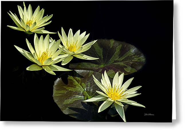 Water Lilies In Yellow Greeting Card by Julie Palencia