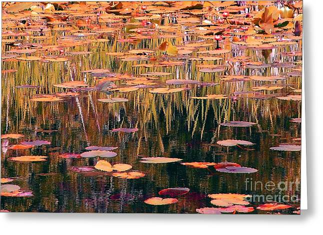 Water Lilies Re Do Greeting Card