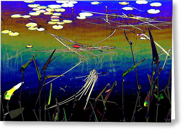 Water Lillies Greeting Card by Carolyn Reinhart