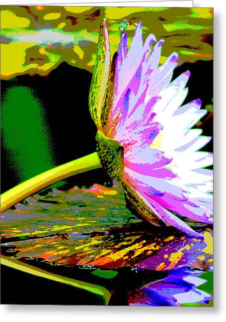 Water Lilly Greeting Card by Dieter  Lesche