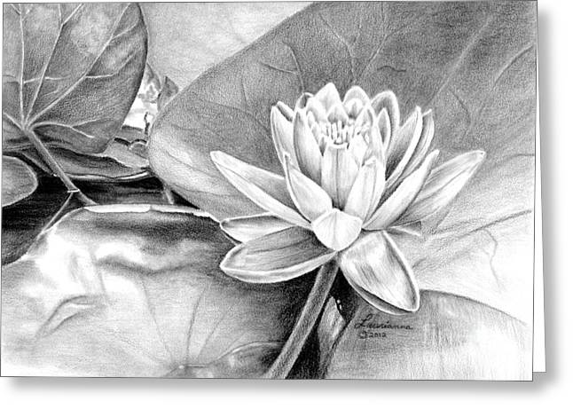 Water Lilly Greeting Card by Laurianna Taylor