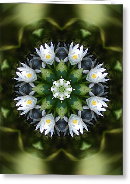 Water Lily Mandala Greeting Card by Peter Kallai