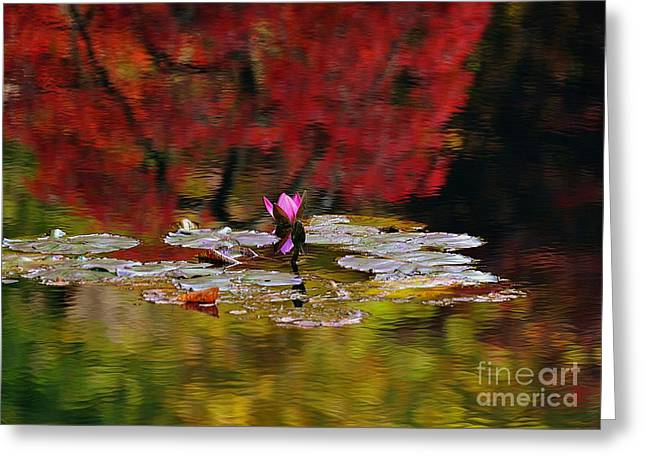 Water Lily Reflection Greeting Card by Lisa L Silva