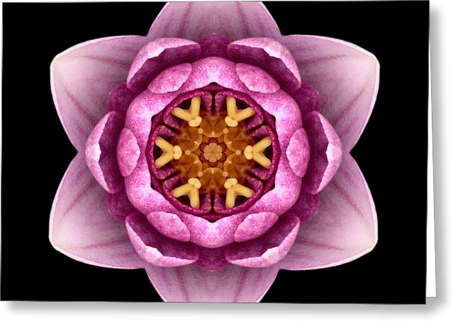 Water Lily X Flower Mandala Greeting Card by David J Bookbinder