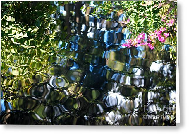 Water Reflections 9 Greeting Card by Nancy Mueller